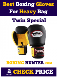 Twin Special Best Boxing Gloves Heavy bag