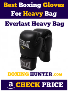 Everlast Mixed Martial Arts for Heavy Bag