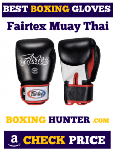 ) Fairtex Muay Thai Style Training Sparring Gloves