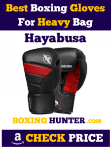 Hayabusa T3 Best Boxing Gloves