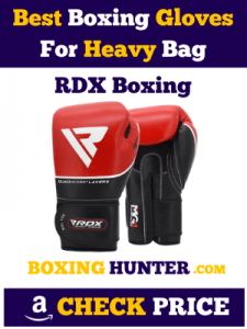 RDX Best Boxing Gloves