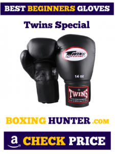 Twins Special Boxing Gloves for Beginner