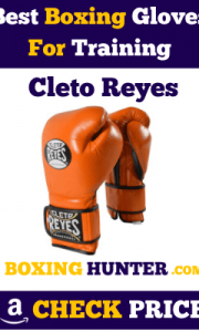 Best Boxing Gloves for Training - Buyer's Guide & Reviews
