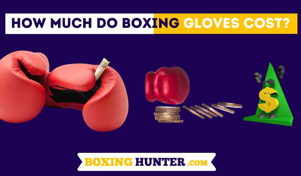 How much do Boxing Gloves cost ?