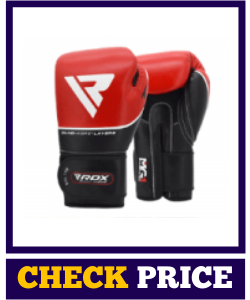 RDX Boxing Gloves Training