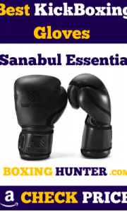 Best Kickboxing Gloves - Reviews and Buying Guide 2020