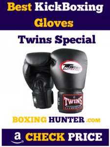 Twins Special Best Boxing Gloves
