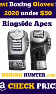 best boxing gloves under 50