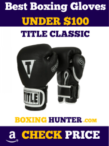 5 TITLE Classic Pro Style Training Gloves