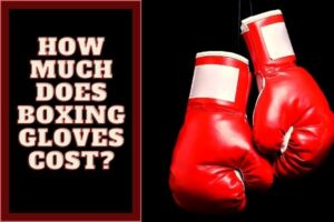Cost of boxing gloves
